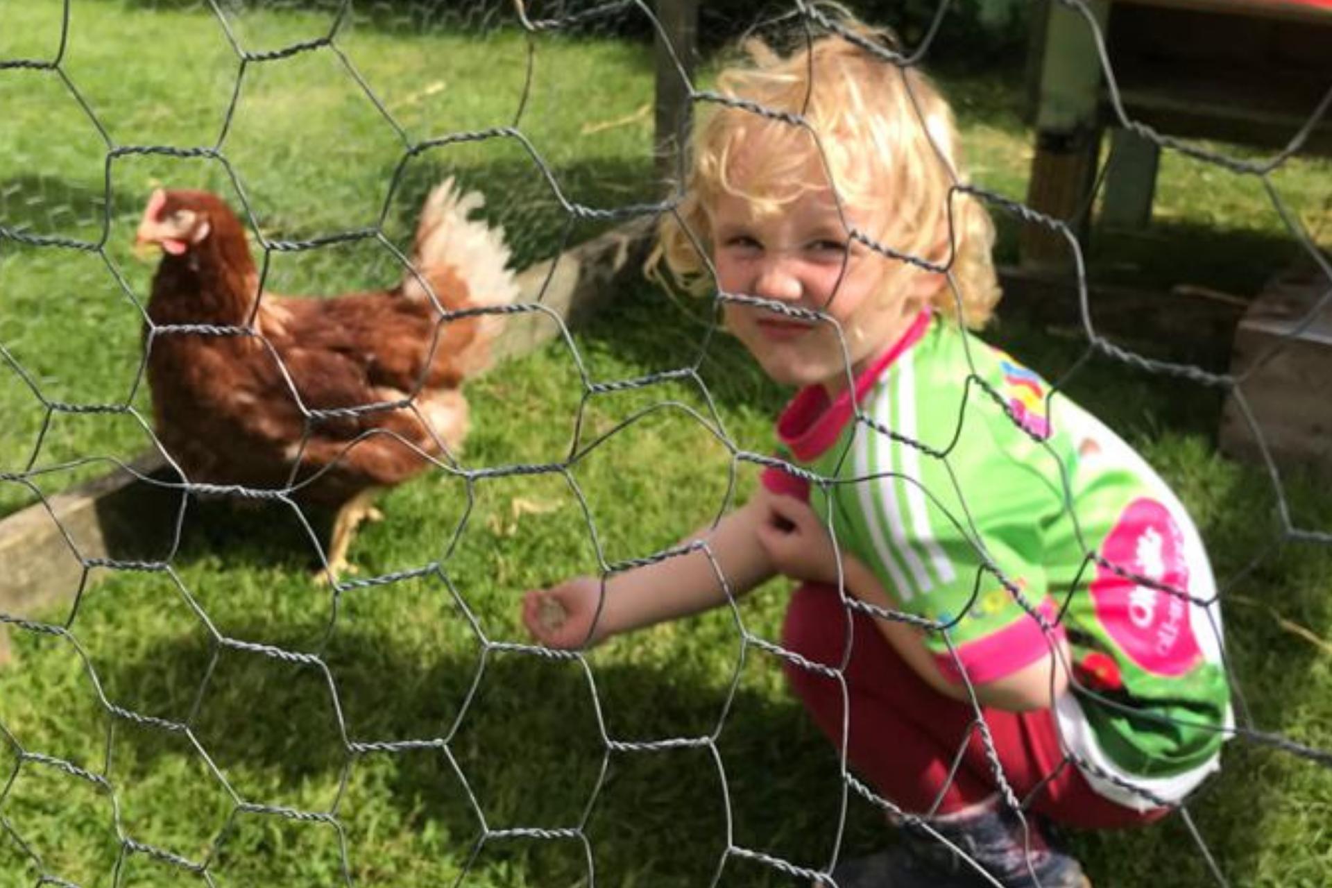 Marlhill Open Farm - fun for all the family